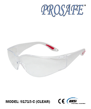 91715 Full Eye Protection Eyewear (clear lens)